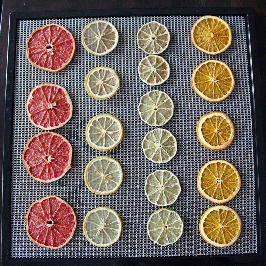 Dehydrated citrus wheels on a dehydrator tray.