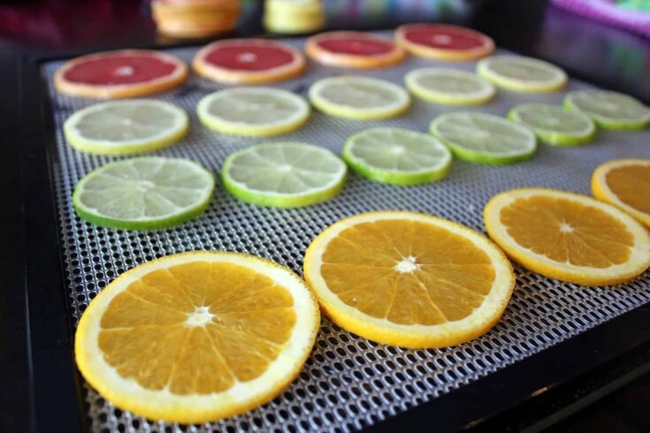 Dehydrated Citrus {Oranges, Grapefruit, Lemons and Limes}