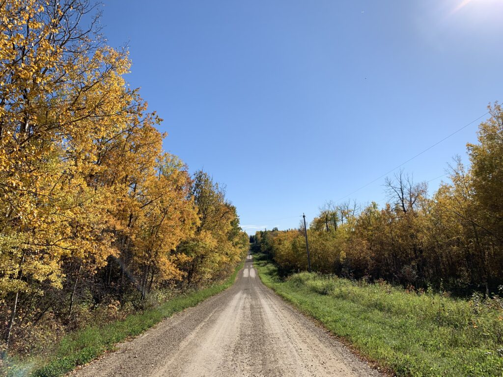 A country road flanked by trees with orange leaves.