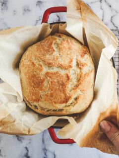 Lifting the baked bread boule from the dutch oven.