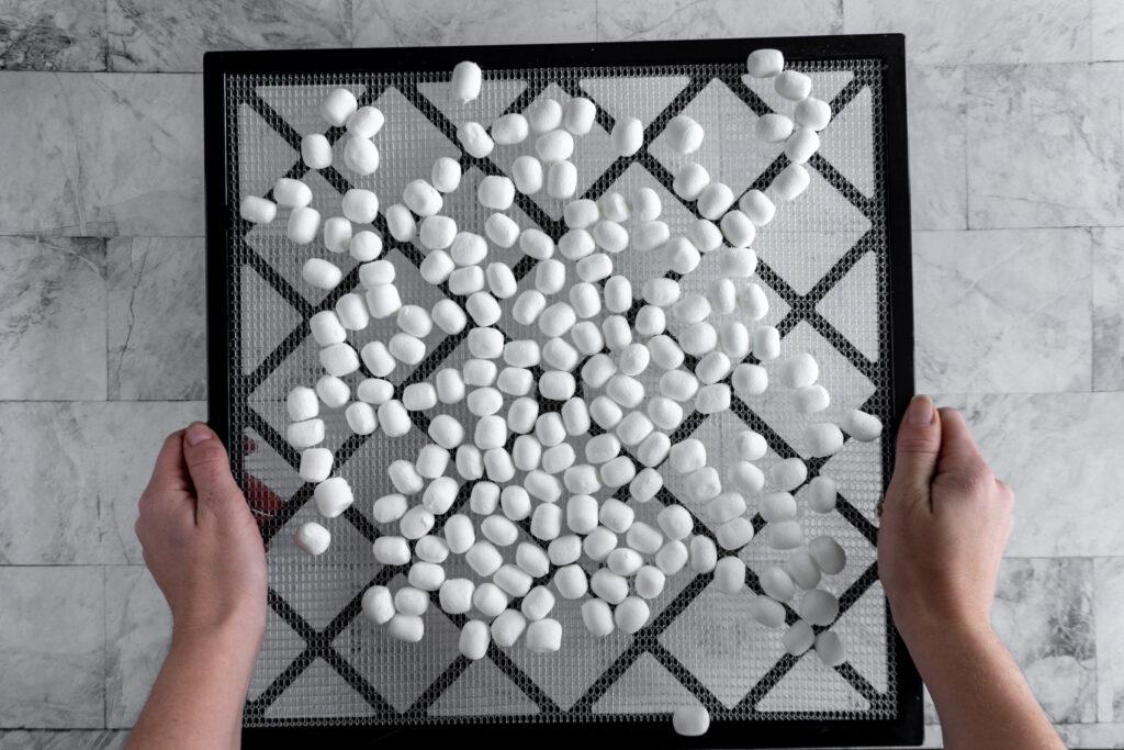 Fully dehydrated marshmallows on a dehydrator tray.