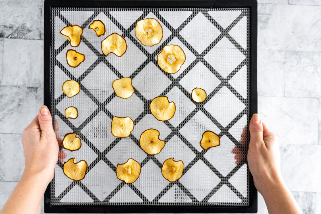 Fully dehydrated pear slices on a dehydrator tray.