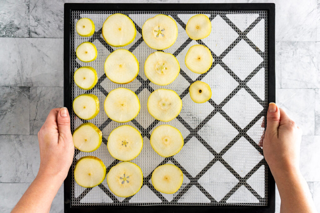 Raw pear slices arranged in rows on a dehydrator try.