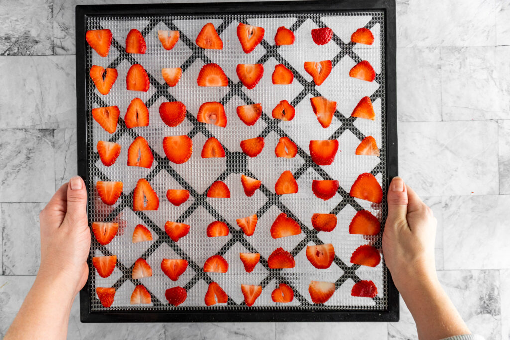 Carrying a tray of prepared strawberries to the dehydrator.