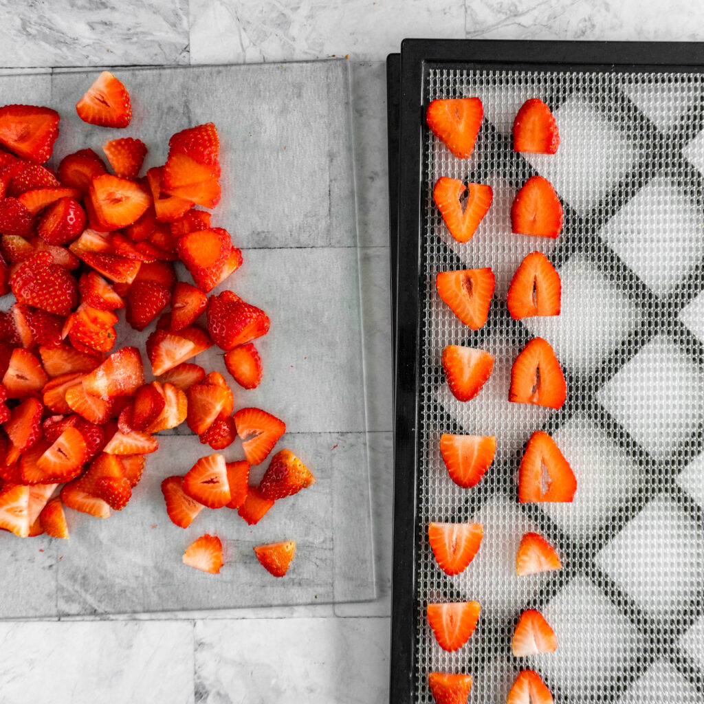 Arranging the sliced strawberries on a mesh dehydrator tray.