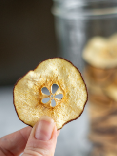 Pinching a dehydrated pear slice between a thumb and finger.