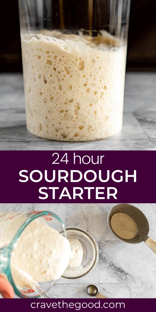 24 hour sourdough starter pinterest graphic.