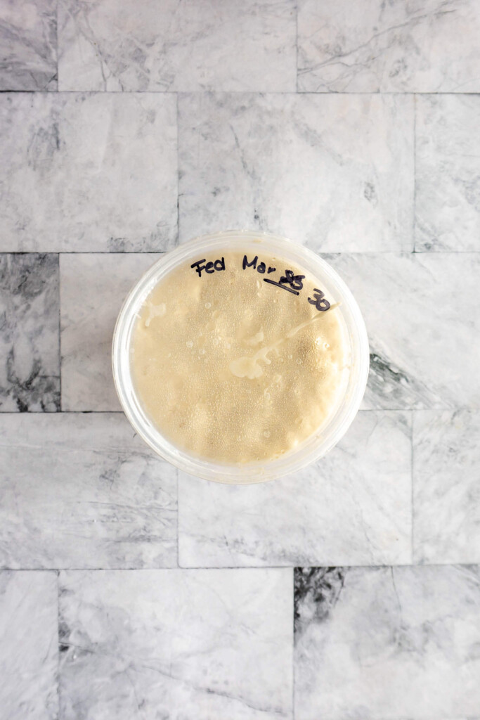 Sourdough starter in a container with fed date labeled on the lid.