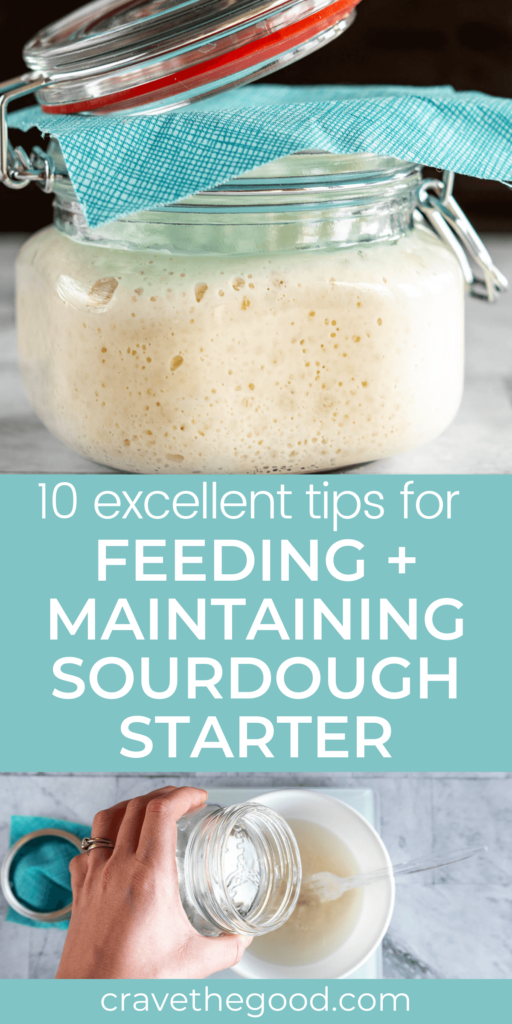 10 tips and tricks for feeding and maintaining sourdough starter pinterest graphic.