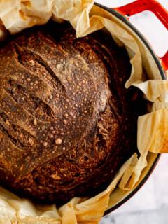 Chocolate sourdough boule in a red dutch oven.