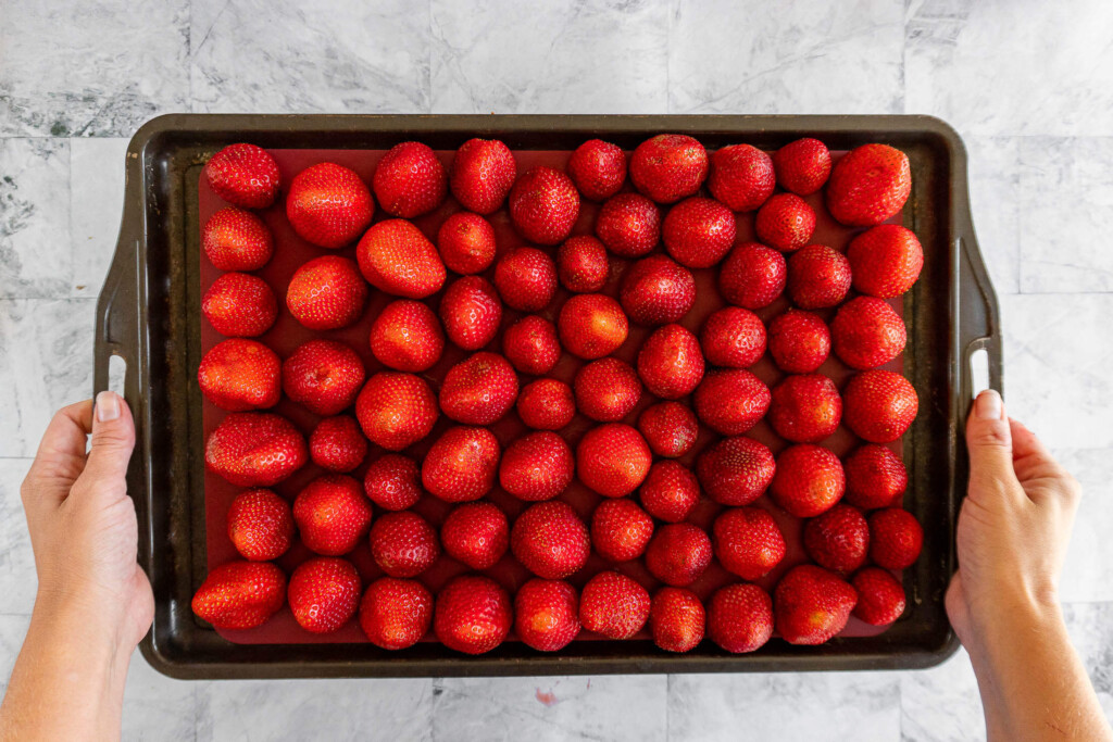 A baking sheet full of hulled strawberries ready for the freezer.