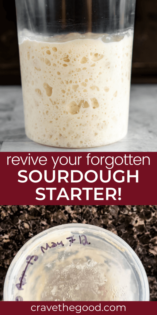 How to revive forgotten sourdough starter pinterest graphic.